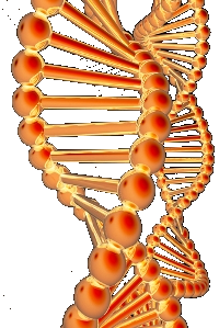 DNA Inventing: Een no nonsens bureau voor uitvinders, actief sinds 2005